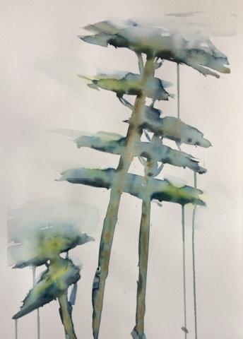 Fyrreskoven. Hanne Ohlsen