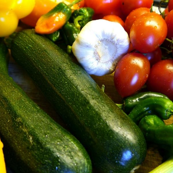 Read more about the article Tipps für eine gesunde Ernährung für Kinder