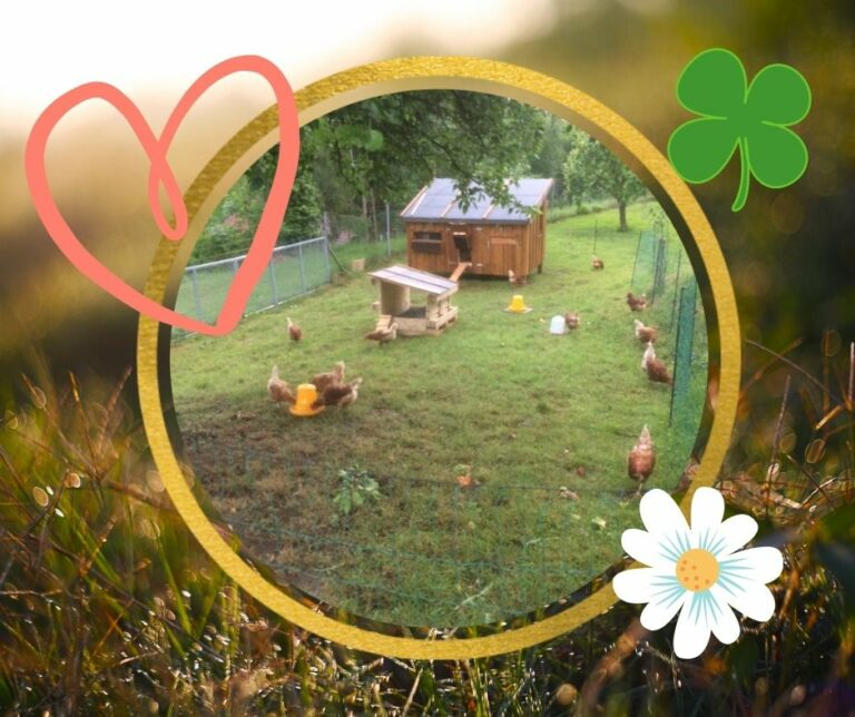 Read more about the article Menschen brauchen echte Liebe, keine bezahlten Betreuer:innen!