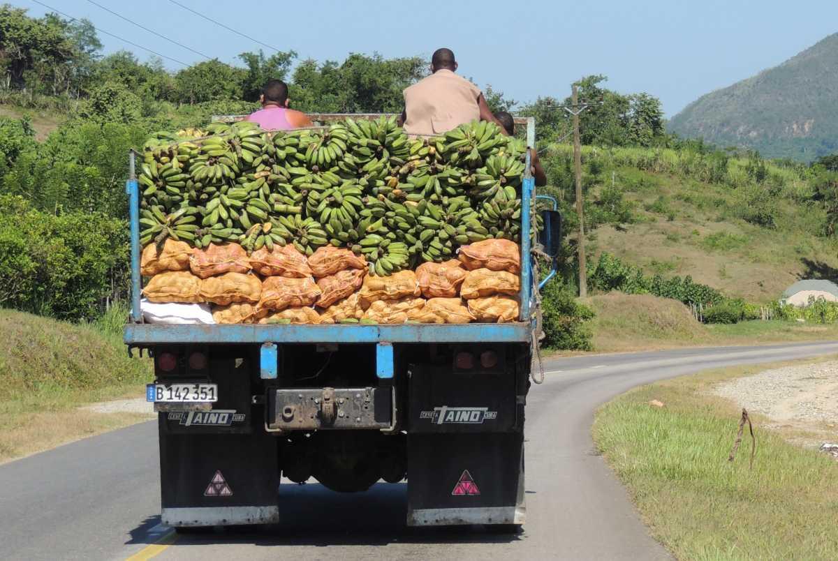 Unterwegs in Kuba gibt es immer etwas zu entdecken.]