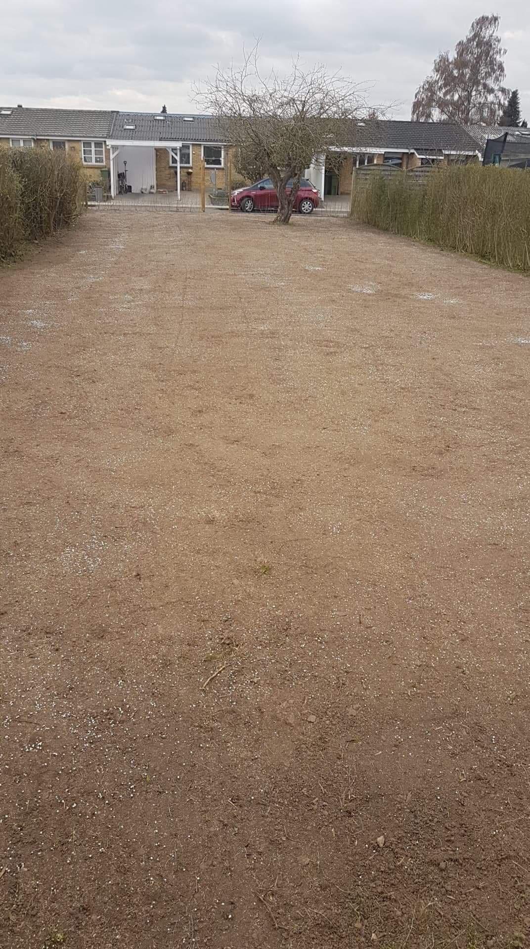 Fjernelse samt anlæggelse af græsplæne
