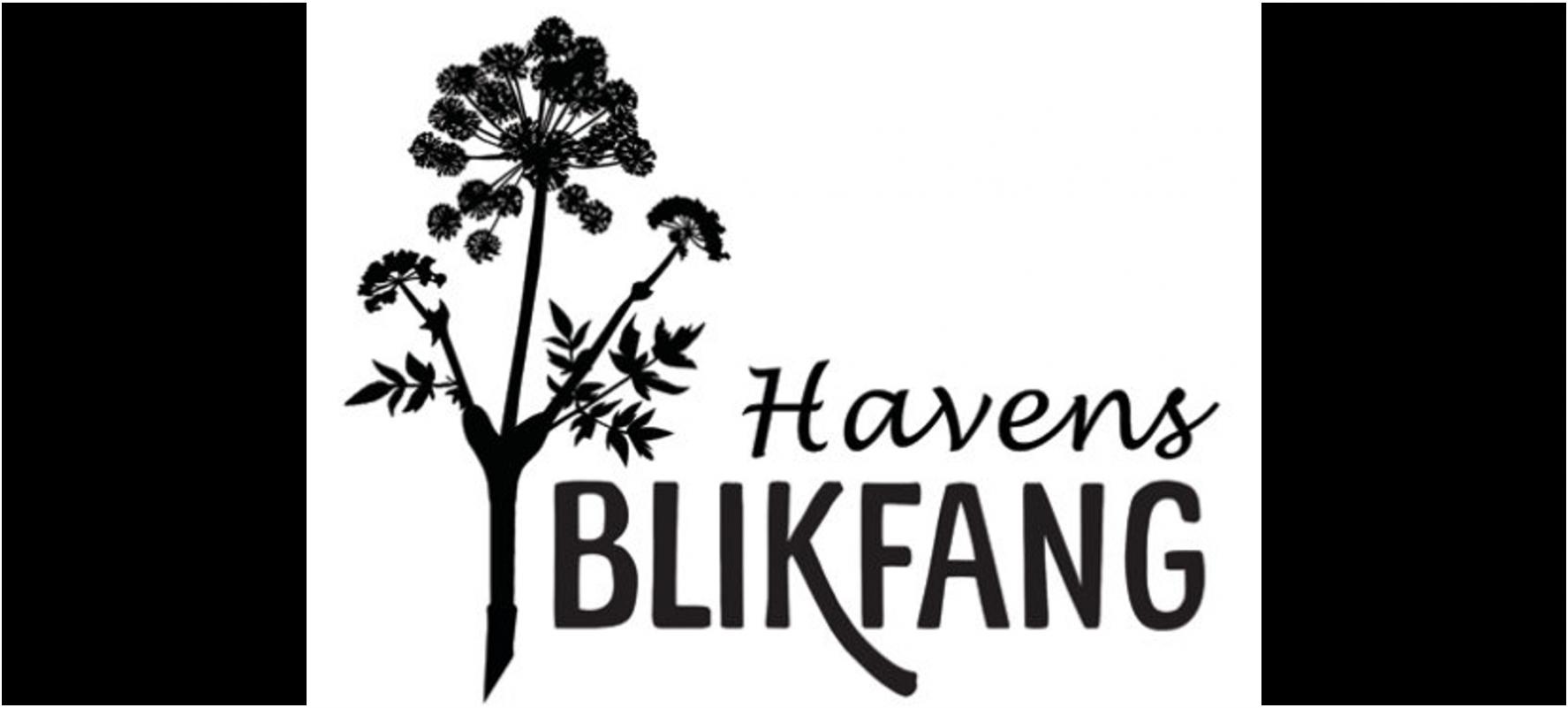 Havens Blikfang
