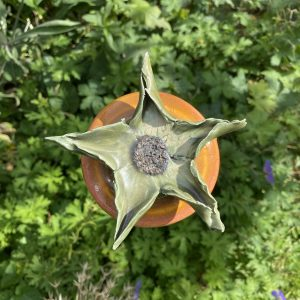 Frøstand-skulpturer og kæmpehyben