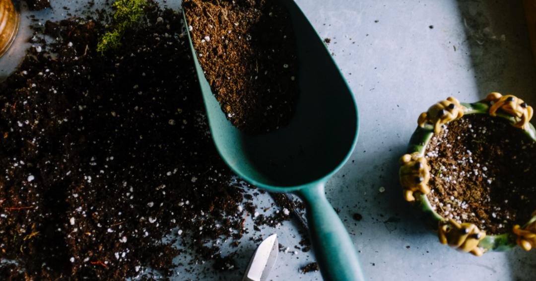 7 tips til jordforbedring i haven