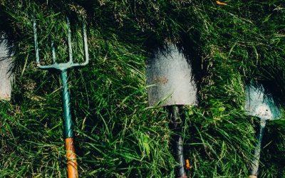 9 effektive haveredskaber jeg ikke ville undvære