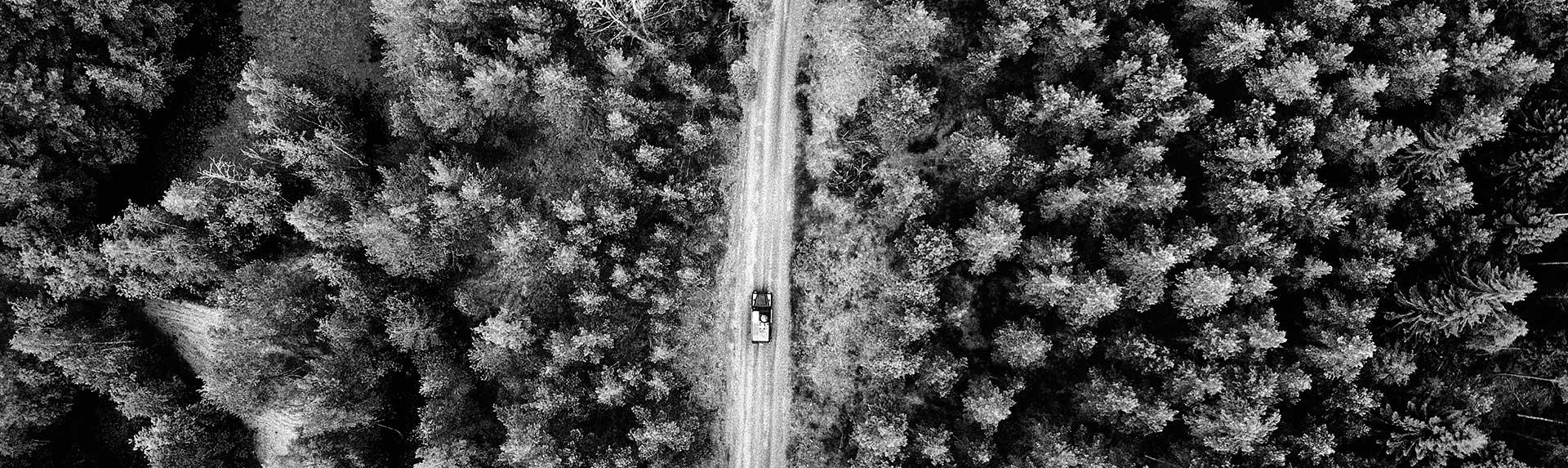 Obra lineal, pistas y caminos forestales