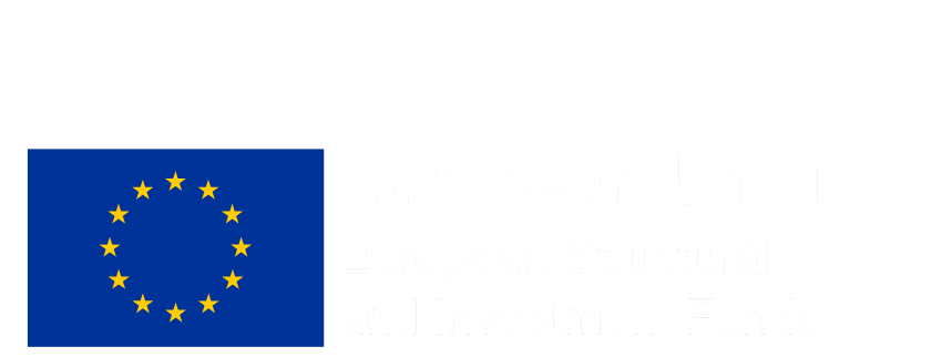 Care to Step Up part funded by the European Union, European Structural and Investment Funds
