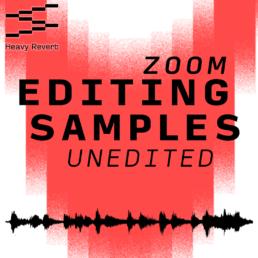 Zoom Samples Unedited