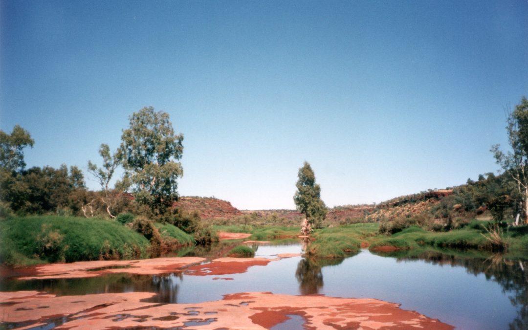 Kamperen in de outback