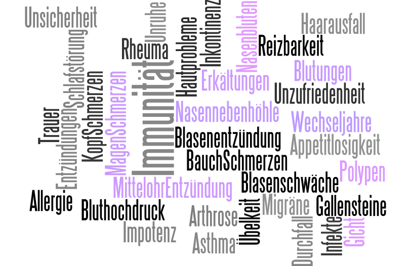 Naturheilkunde Minden Wordcloud