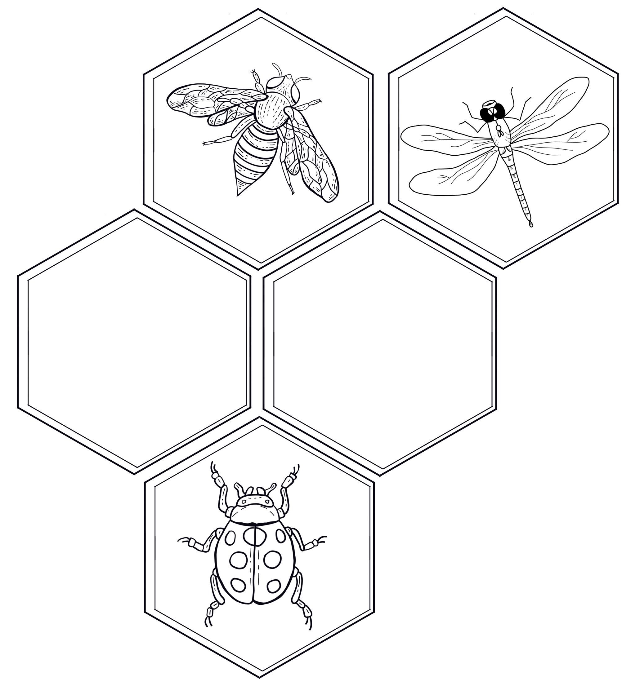 Honeycomb with animals