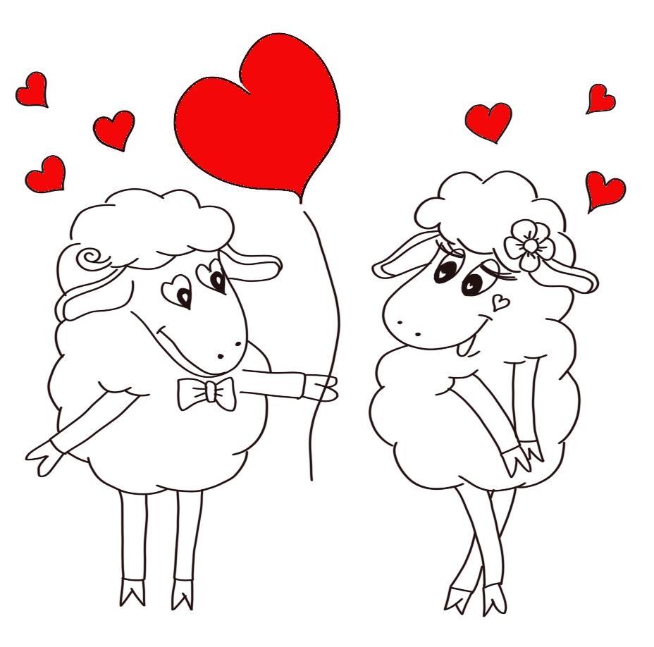 Loveable sheep
