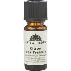 Citron tea tree olie æterisk olie fra Urtegaarden