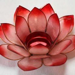 Lotus stage Chakra 1 Rød