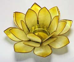 Lotus stage Chakra 3 Gul