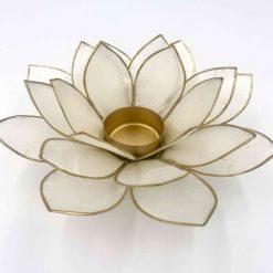 Lotus stage Hvid Natural
