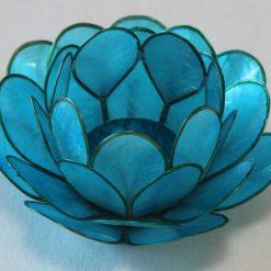 Lotus stage Light Aqua