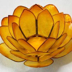 Lotus stage Orange II