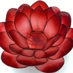 Lotus stage Rød II