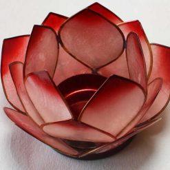Lotus stage Rød Natural
