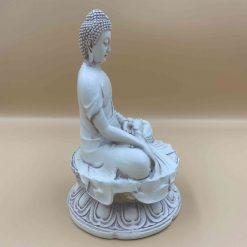 Buddha earth touching