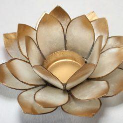 Lotus stage hvis Chakra 7