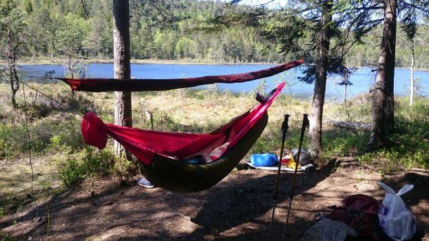 Overnatting i Vestfolds sånn middels dype skoger