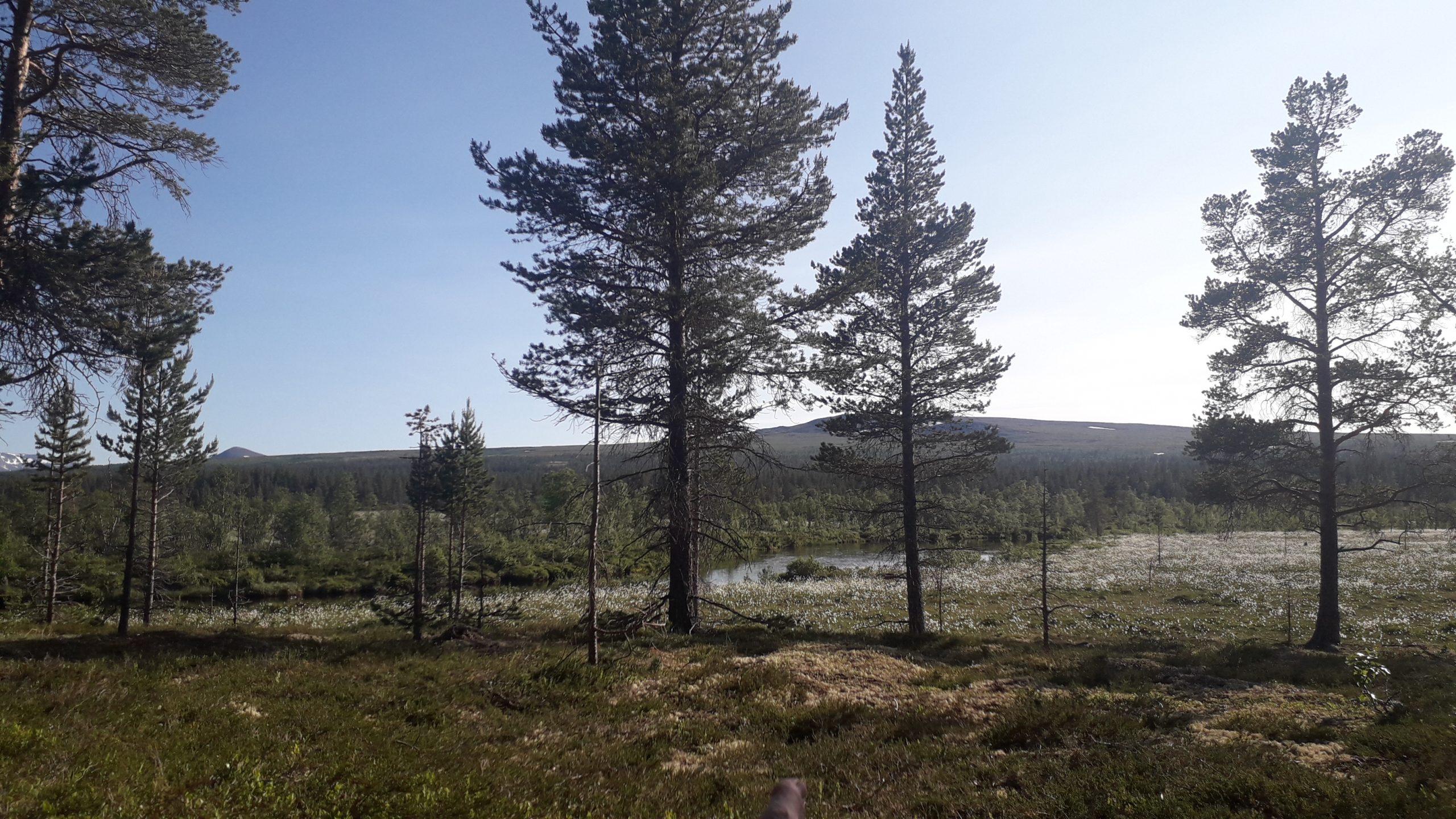 Med badering i Sølna – dag 2