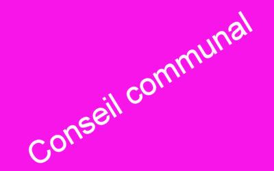 Conseil communal ce 29 mars 2021