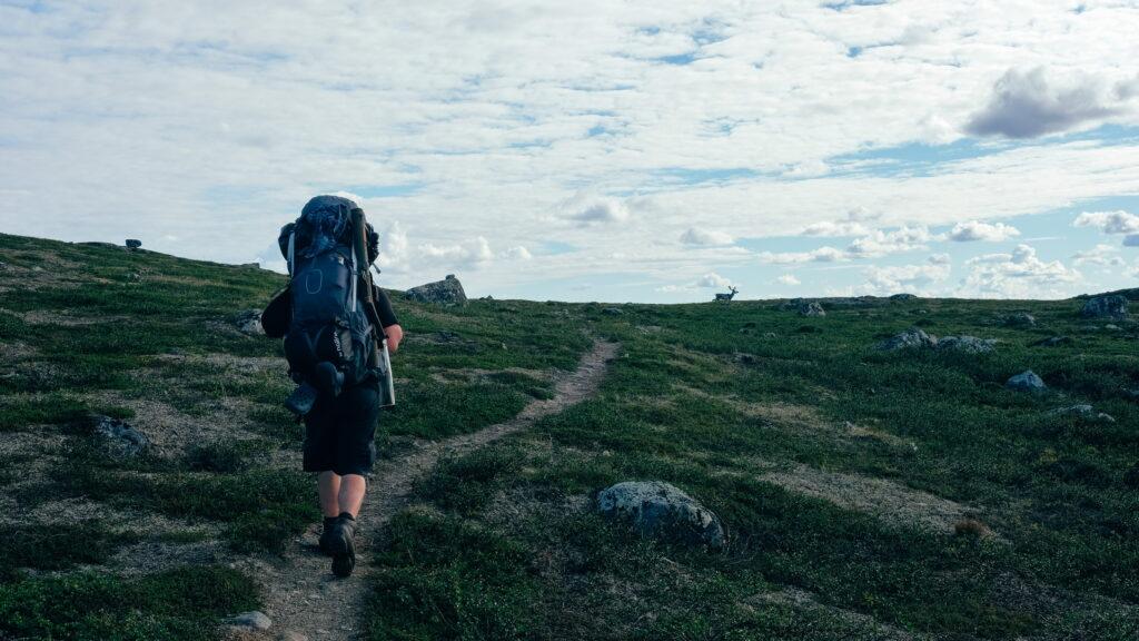 Mies kävelemässä Hetta-Pallas vaellusreitillä.