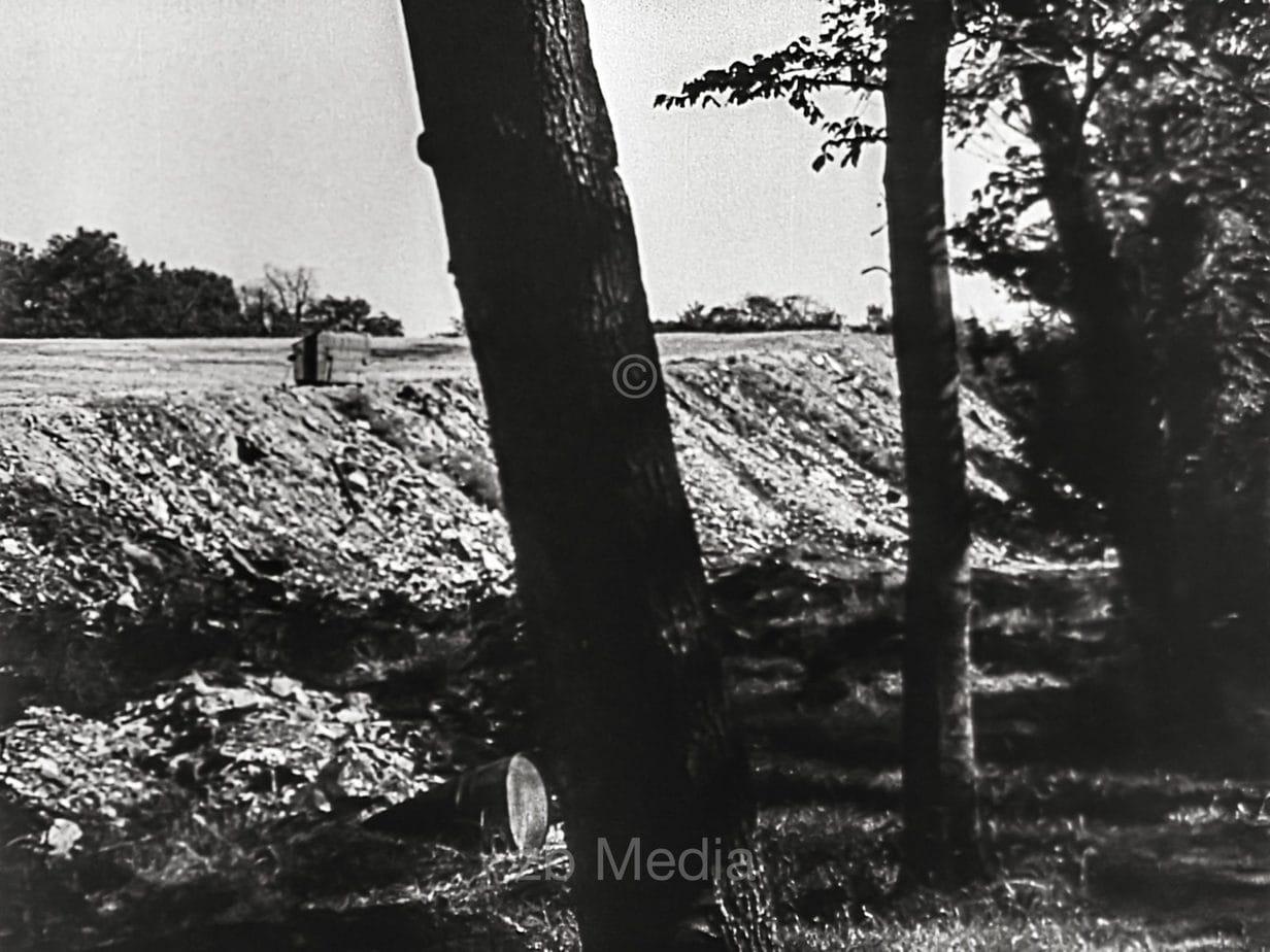 Englischer Garten München, Sommer 1946