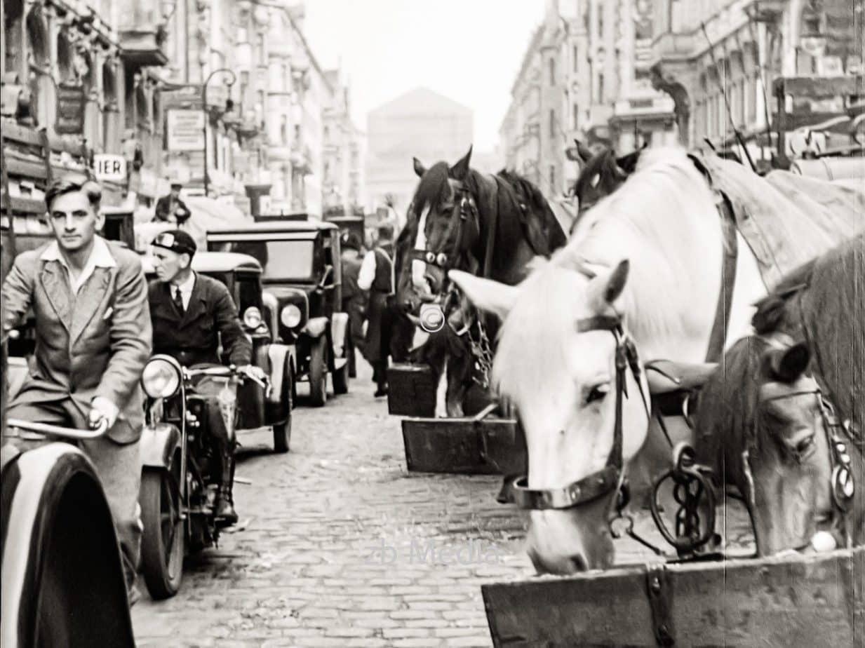 Pferde am Markt in Berlin 1930
