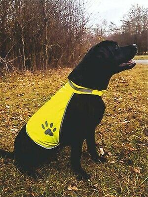 Fluo hesje hond met naam