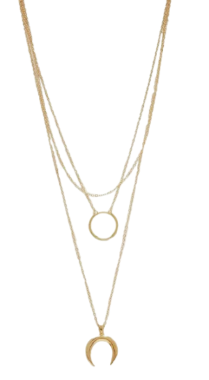 Circle & Horn Layered Necklace