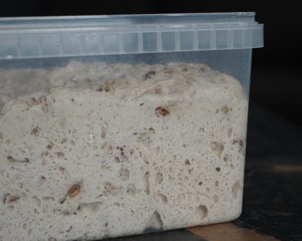 Boller bagt uden gær kun på surdej