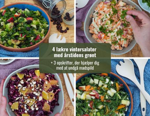 Vintersalater - madplan - nyhedsbrev