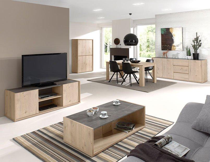 Furniture leasing company