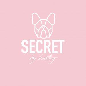 Secret by Bentley