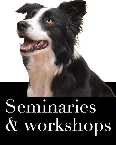 Workshops en seminaries