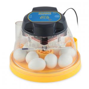 Äggkläckningsmaskin höns