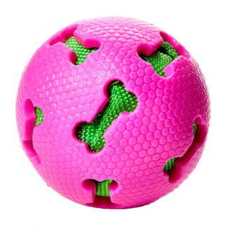 Aktivitetsboll hund
