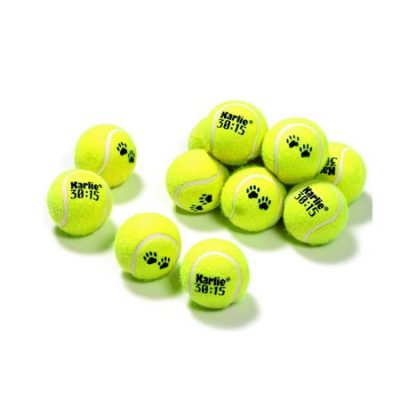 Tennisboll hundleksak