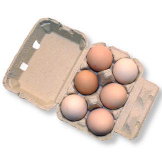 Äggkartong 6 ägg