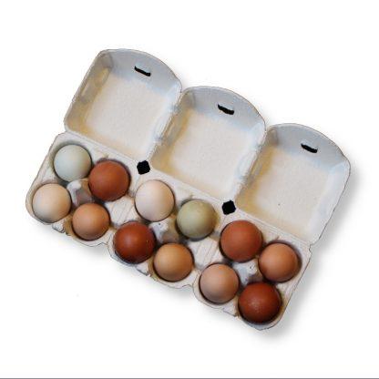 Äggkartonger