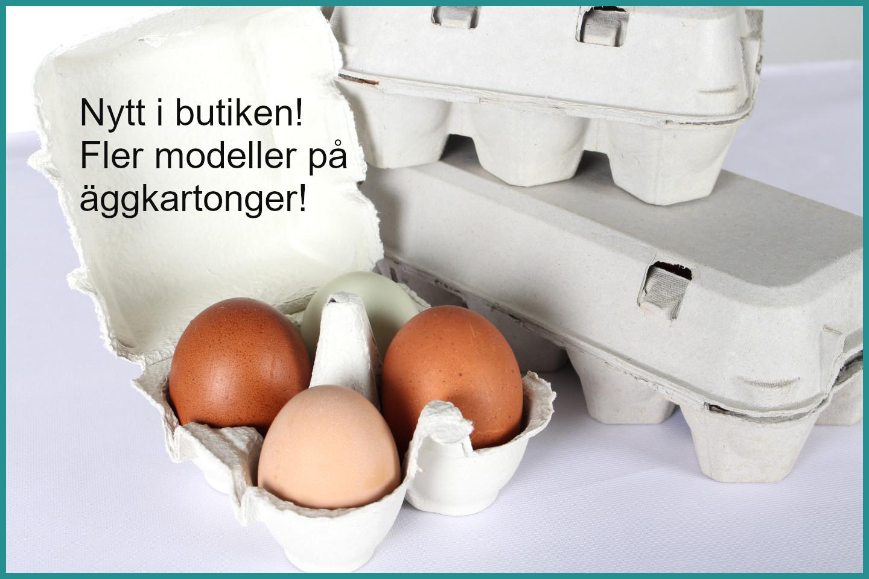 Äggkartonger utan tryck