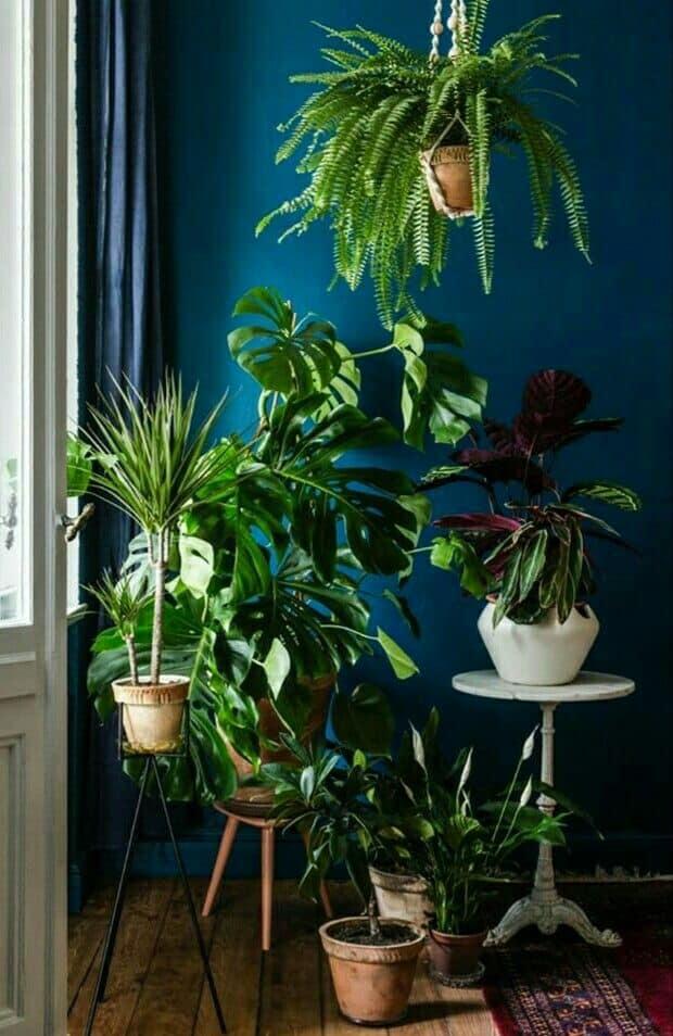 Blogs Kleur in je huis |Hout en Vorm