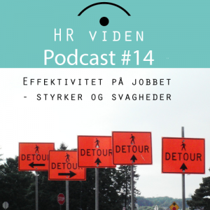 Podcast 14: SWOT effektivitet