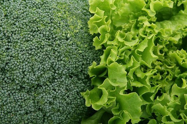 Leafy greens and the cruciferous plants - Broccoli & Lettuce