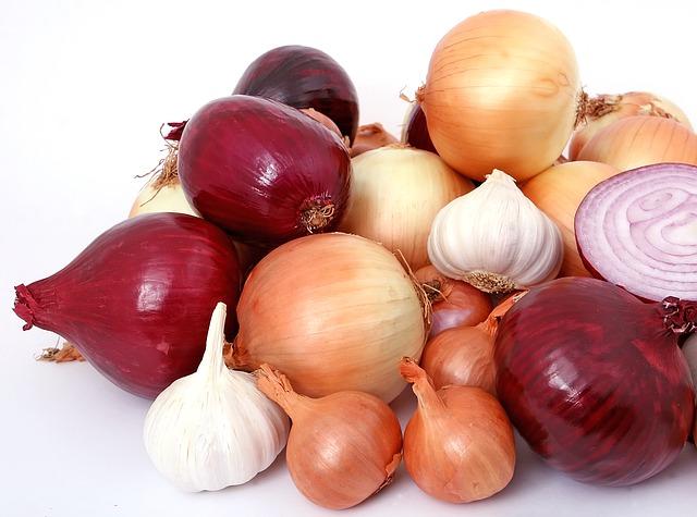 Allium plants - garlic & onion