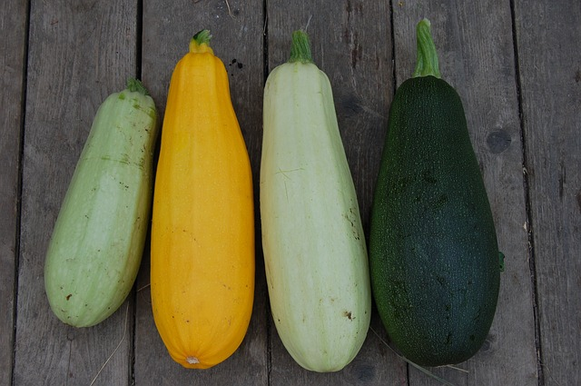 Marrow vegetables - Zucchini